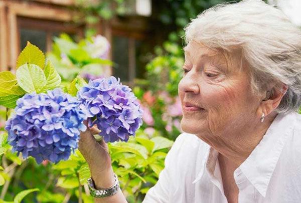 Otterbein-Cridersville Retirement Community