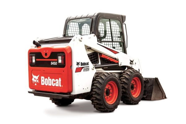 Bobcat of Lima